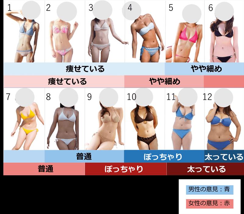 体型の違い(ぽっちゃり・デブ)
